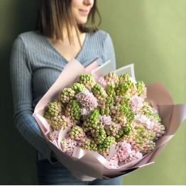 Гиацинты розовые