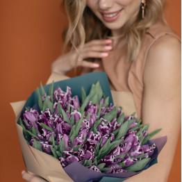 тюльпаны Пэррот сливовые