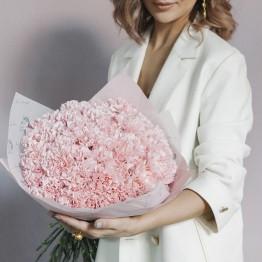 Гвоздики нежно-розовые