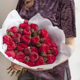Розы пионовидные Ред Пьяно