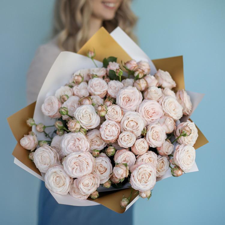 Розы кустовые пионовидные Бомбастик