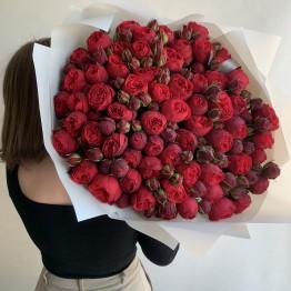 Розы пионовидные Ред Пиано